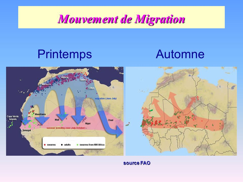 Mouvement de Migration