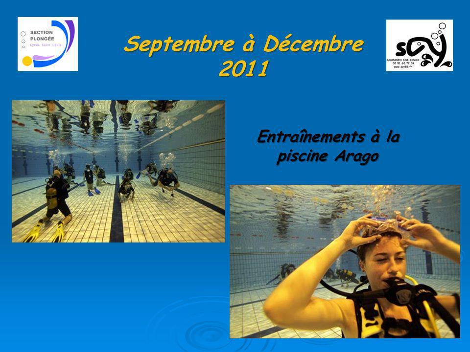 Entraînements à la piscine Arago