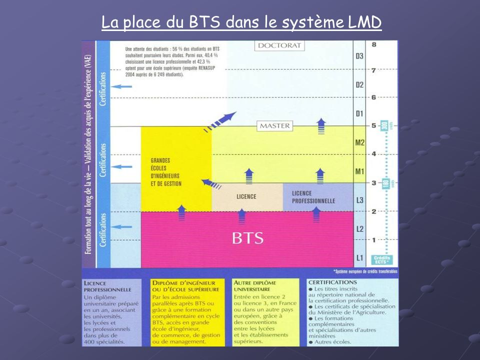 La place du BTS dans le système LMD