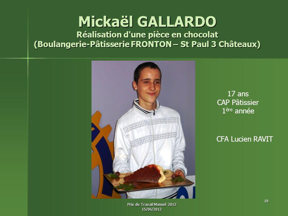 Mickaël GALLARDO Réalisation d une pièce en chocolat (Boulangerie-Pâtisserie FRONTON – St Paul 3 Châteaux)