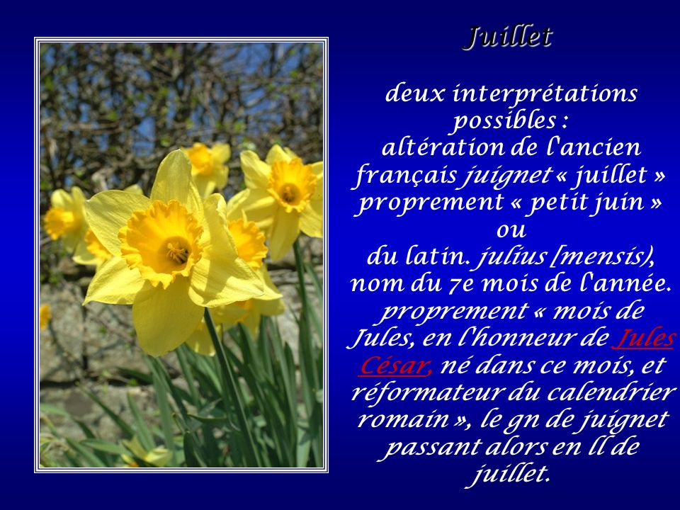deux interprétations possibles :