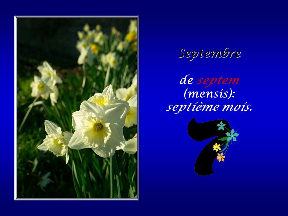 de septem (mensis): septième mois.