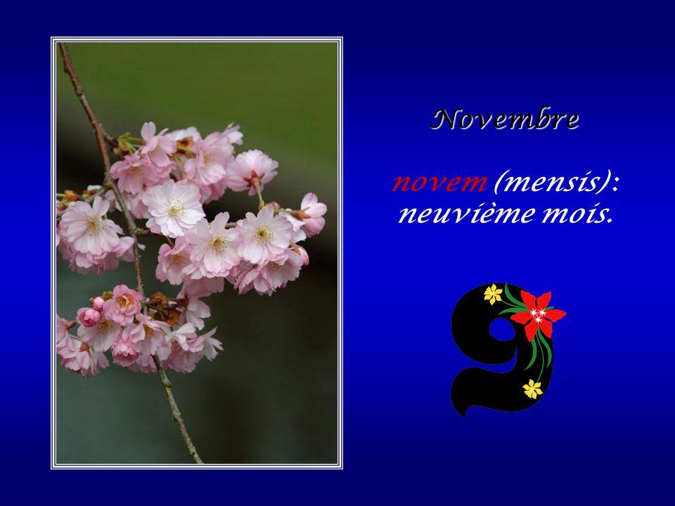 novem (mensis) : neuvième mois.