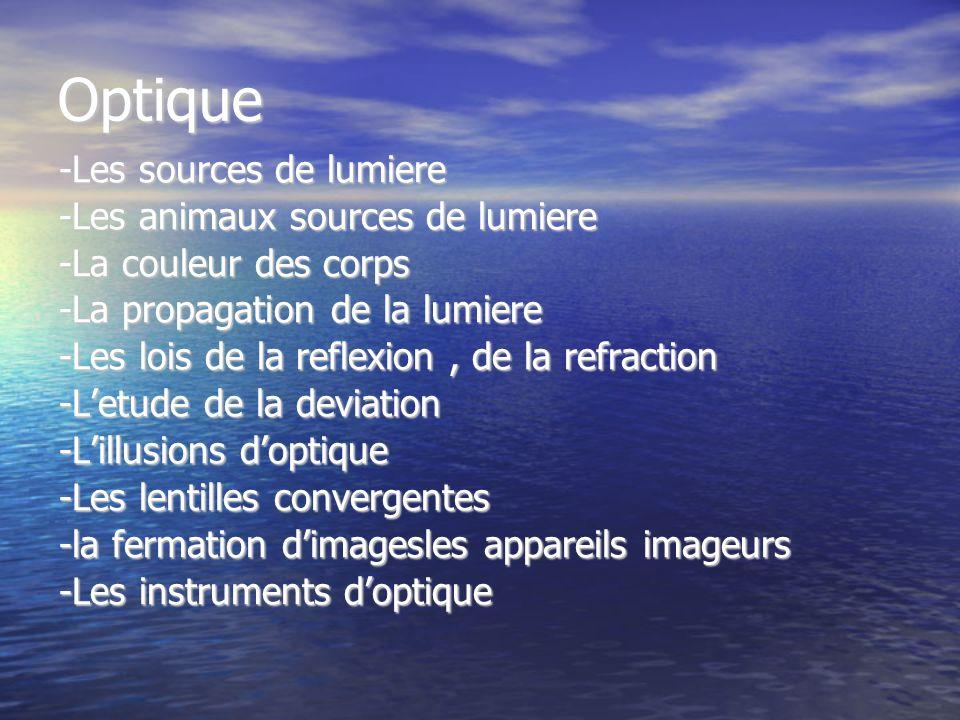 Optique -Les sources de lumiere -Les animaux sources de lumiere