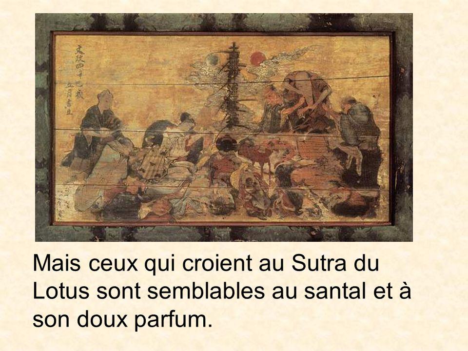Mais ceux qui croient au Sutra du Lotus sont semblables au santal et à son doux parfum.