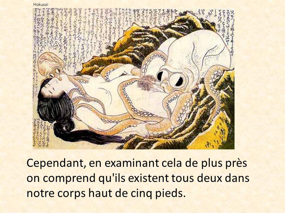 Hokusai Cependant, en examinant cela de plus près on comprend qu ils existent tous deux dans notre corps haut de cinq pieds.