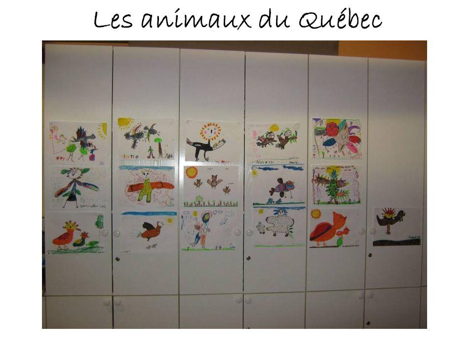 Les animaux du Québec