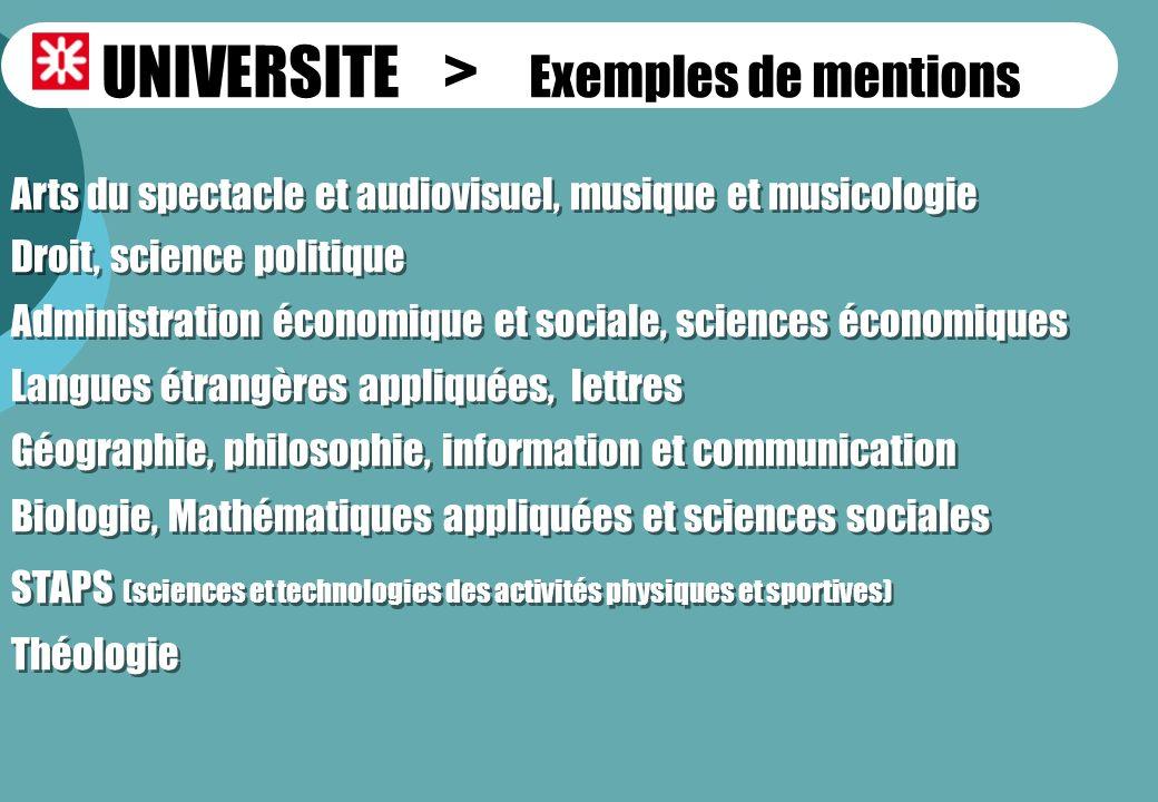 UNIVERSITE > Exemples de mentions