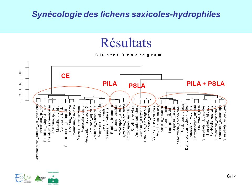 Résultats CE PILA PILA + PSLA PSLA 6/14 Lichens, Biologie, écologie 6