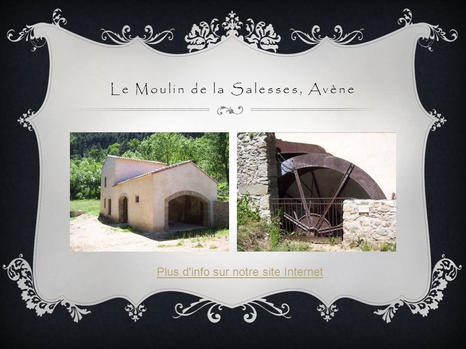 Le Moulin de la Salesses, Avène