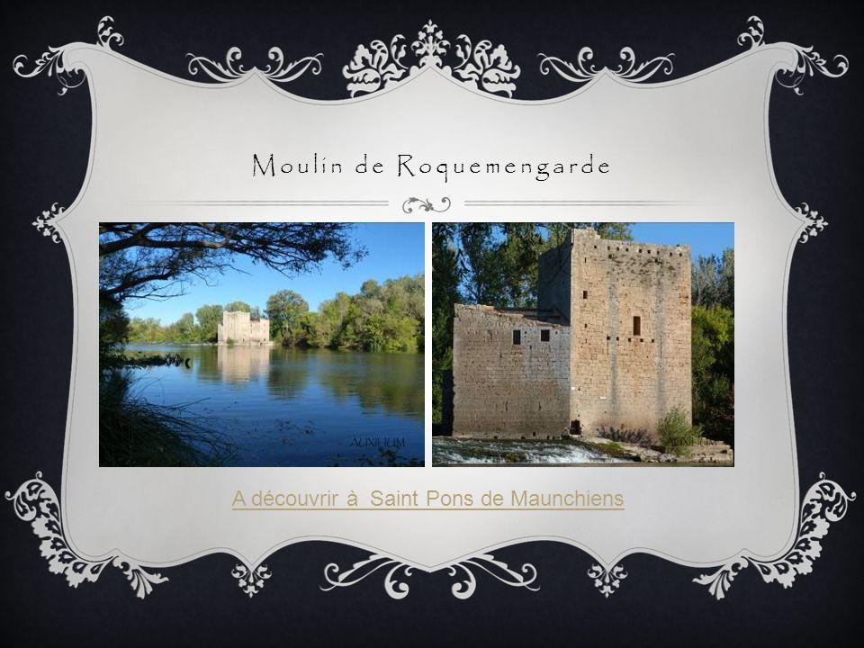 Moulin de Roquemengarde