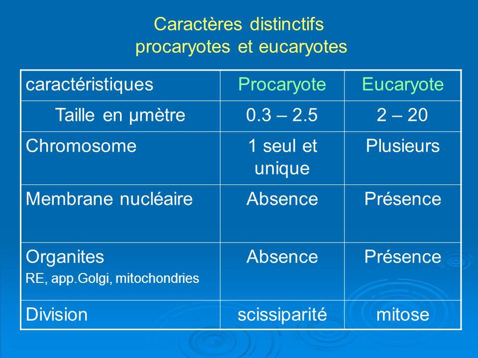Caractères distinctifs procaryotes et eucaryotes caractéristiques