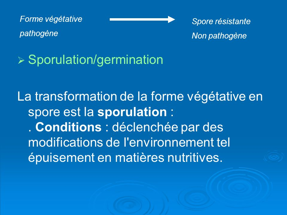 Sporulation/germination