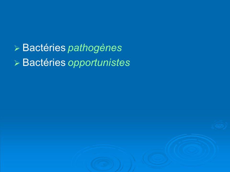 Bactéries pathogènes Bactéries opportunistes