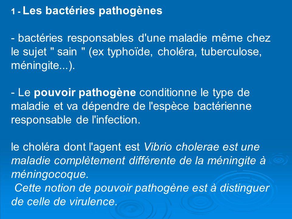 1 - Les bactéries pathogènes - bactéries responsables d une maladie même chez le sujet sain (ex typhoïde, choléra, tuberculose, méningite...). - Le pouvoir pathogène conditionne le type de maladie et va dépendre de l espèce bactérienne responsable de l infection.