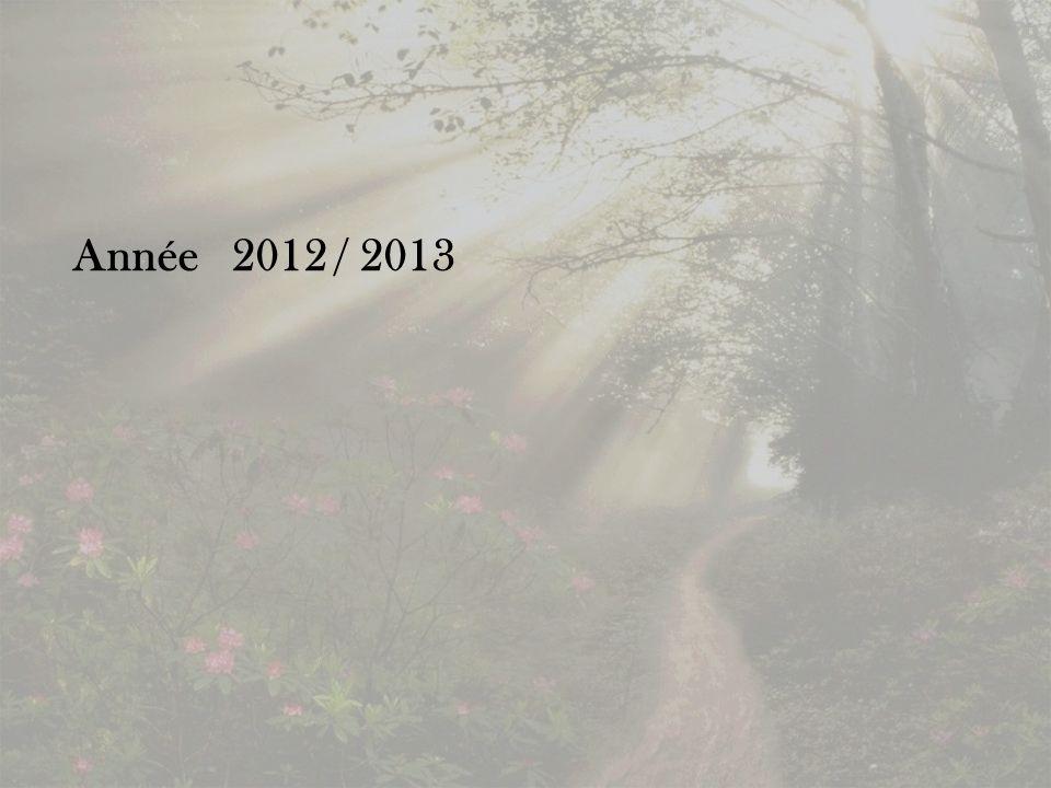 Année 2012 / 2013
