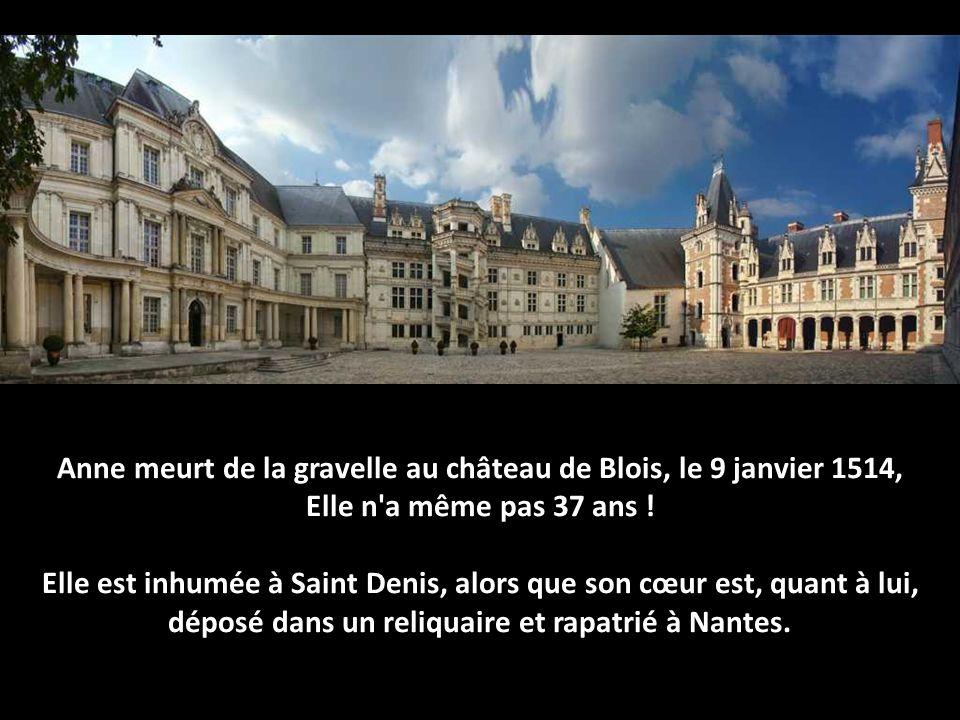 Anne meurt de la gravelle au château de Blois, le 9 janvier 1514,