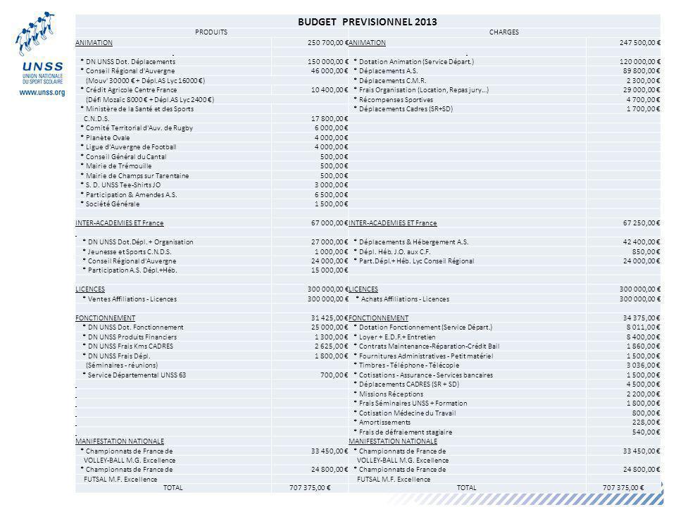 BUDGET PREVISIONNEL 2013 PRODUITS CHARGES ANIMATION 250 700,00 €