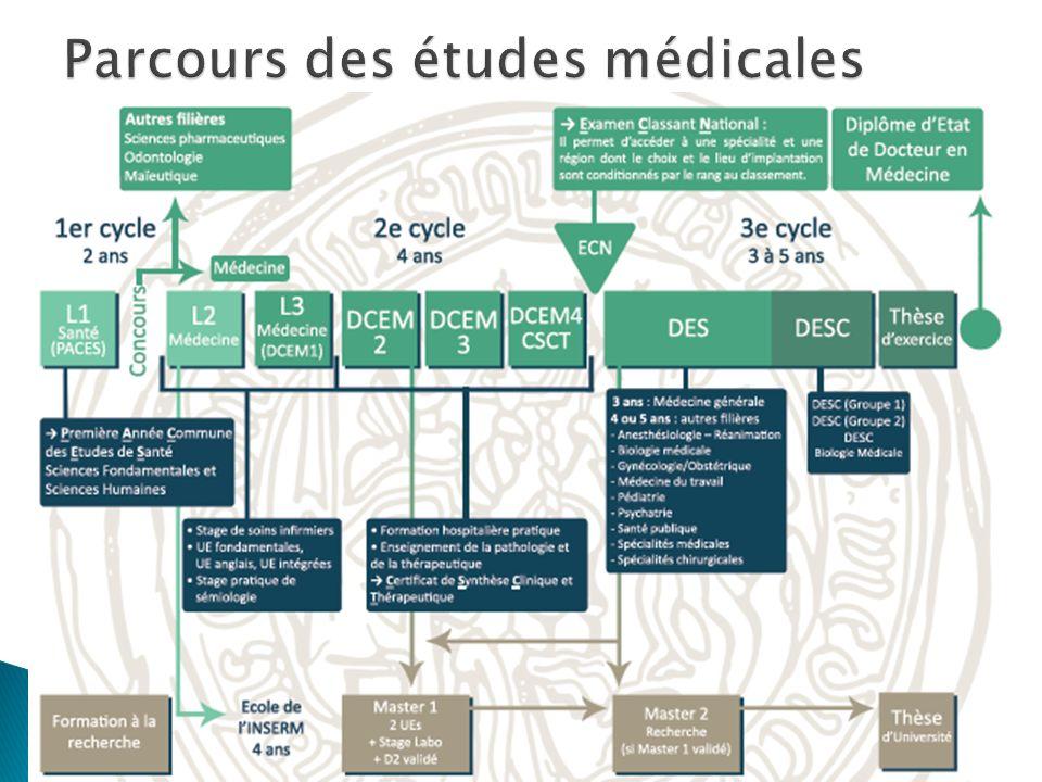 Parcours des études médicales
