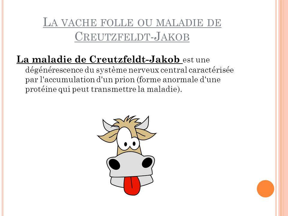 La vache folle ou maladie de Creutzfeldt-Jakob
