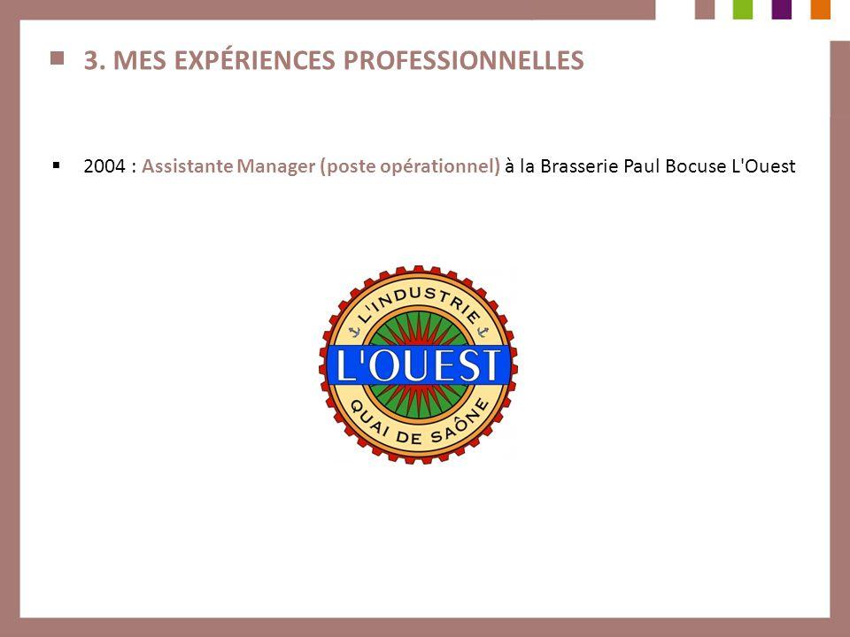 3. MES EXPÉRIENCES PROFESSIONNELLES