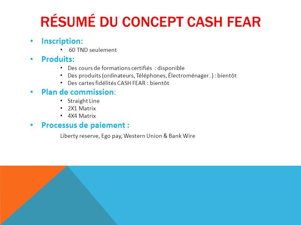 Résumé du concept CASH FEAR