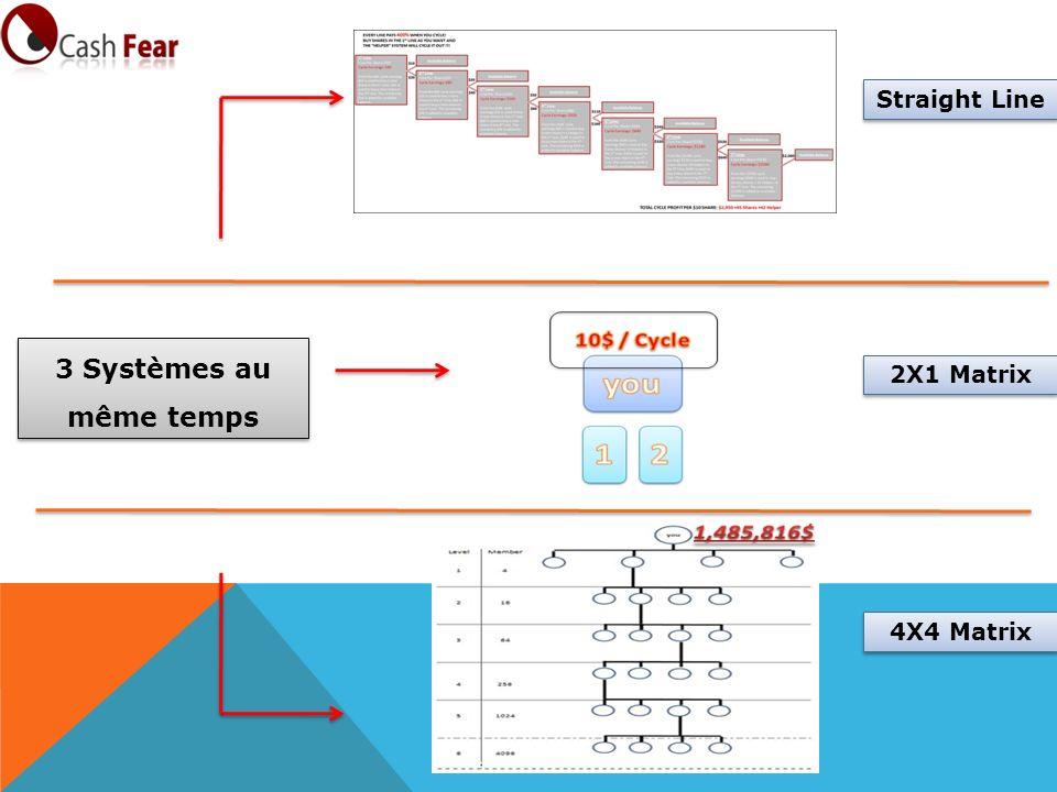 Straight Line 3 Systèmes au même temps 2X1 Matrix 4X4 Matrix