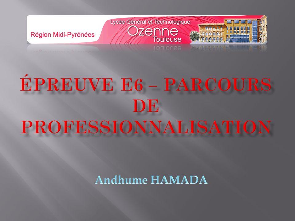 Épreuve E6 – PARCOURS DE PROFESSIONNALISATION