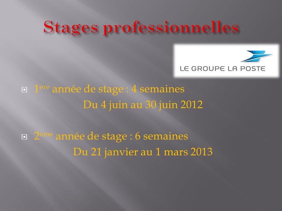 Stages professionnelles