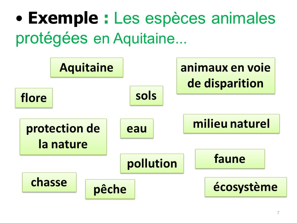 animaux en voie de disparition protection de la nature