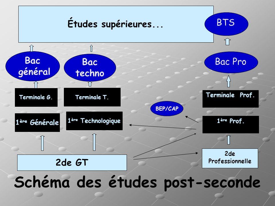Schéma des études post-seconde