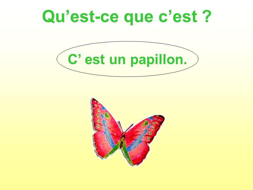 Qu'est-ce que c'est C' est un papillon.