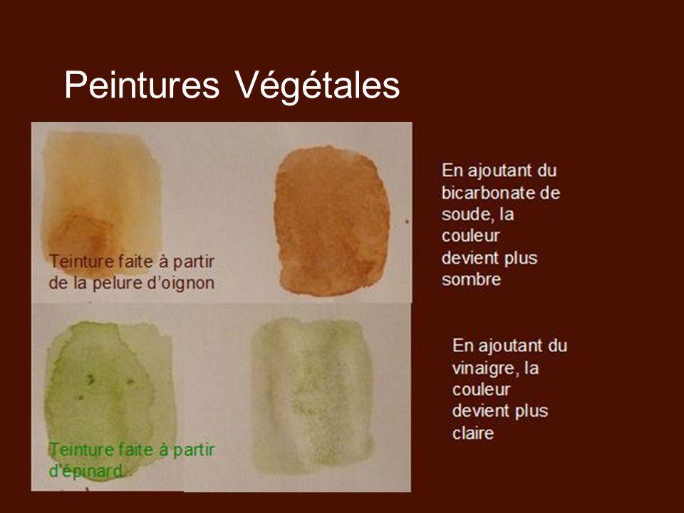 Peintures Végétales Teinture faite à partir de la pelure d'oignon