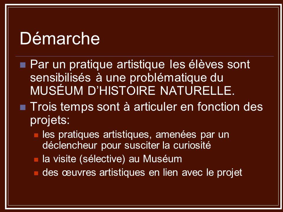 Démarche Par un pratique artistique les élèves sont sensibilisés à une problématique du MUSÉUM D'HISTOIRE NATURELLE.