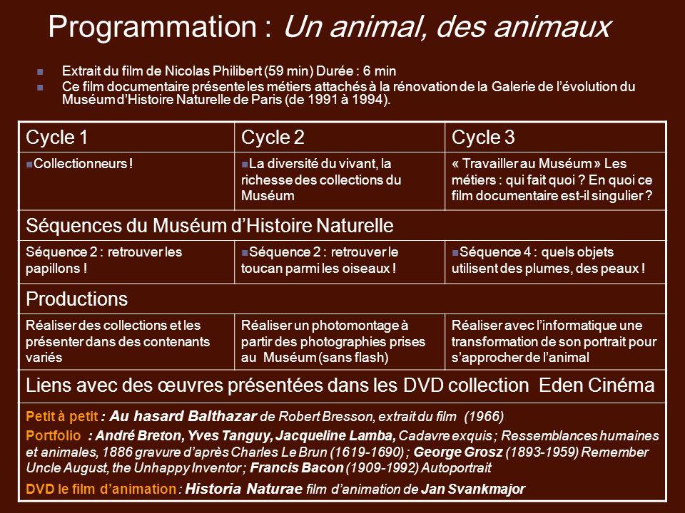 Programmation : Un animal, des animaux