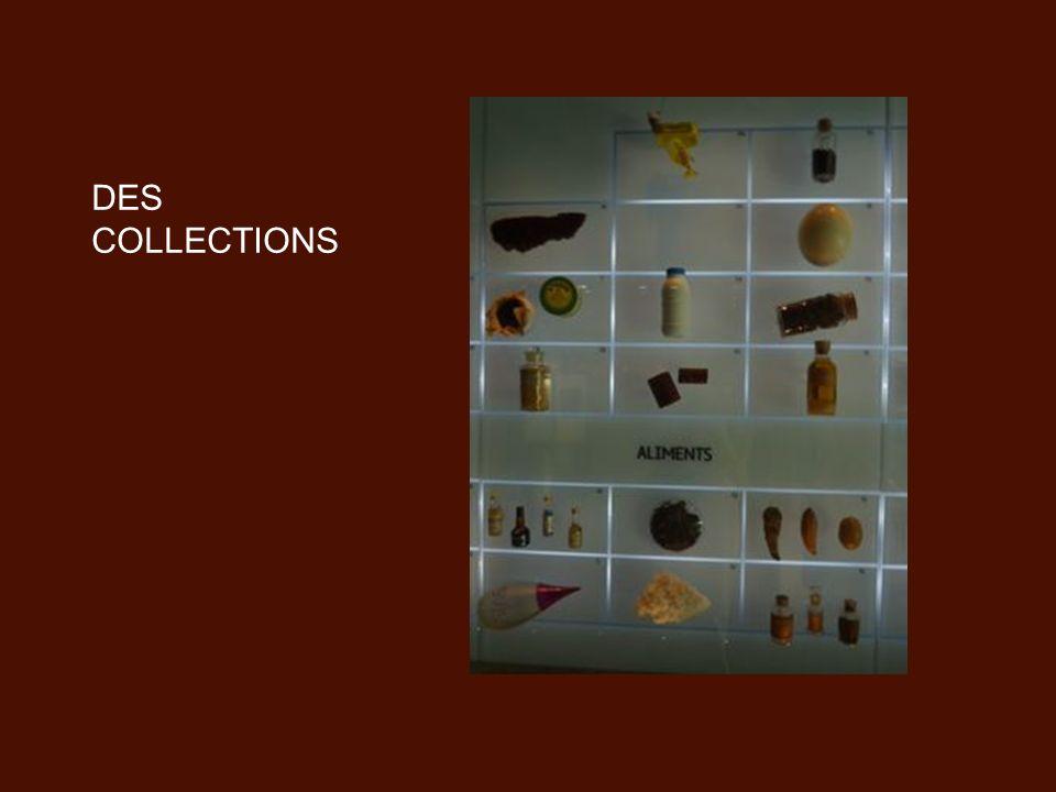 DES COLLECTIONS