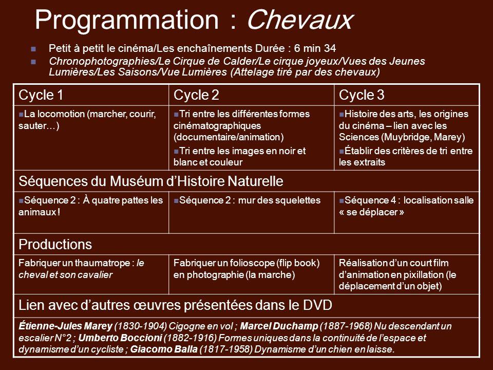 Programmation : Chevaux