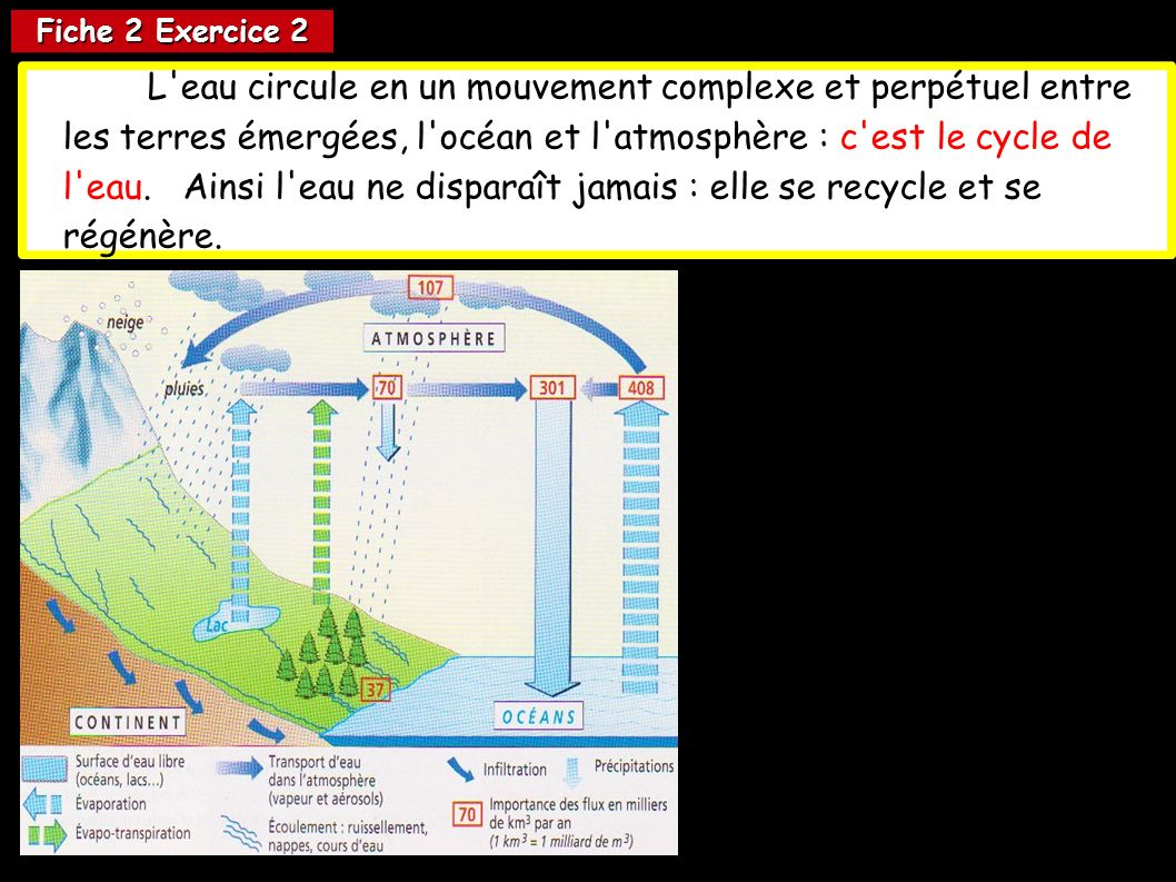 Fiche 2 Exercice 2