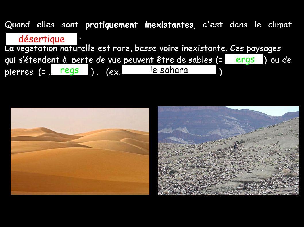 désertique ergs regs le sahara
