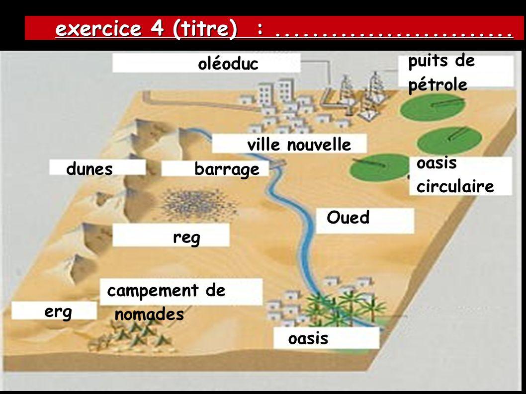 exercice 4 (titre) : .......................... puits de pétrole