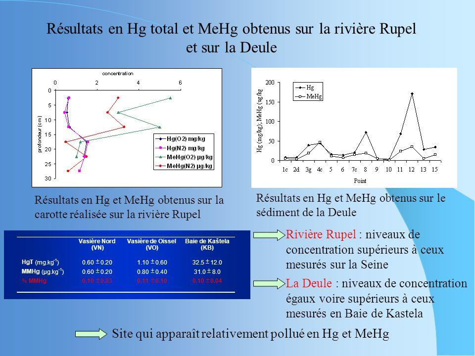 Résultats en Hg total et MeHg obtenus sur la rivière Rupel et sur la Deule