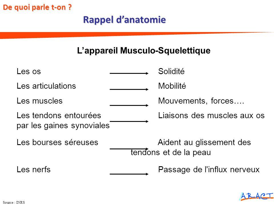 L'appareil Musculo-Squelettique