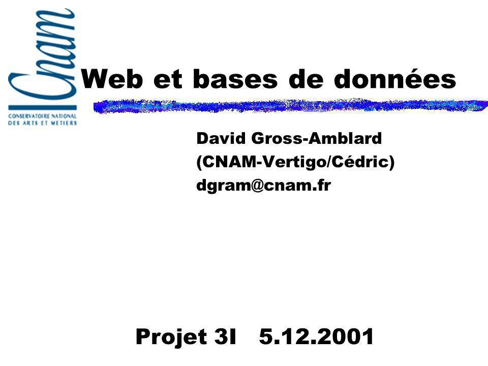David Gross-Amblard (CNAM-Vertigo/Cédric) dgram@cnam.fr