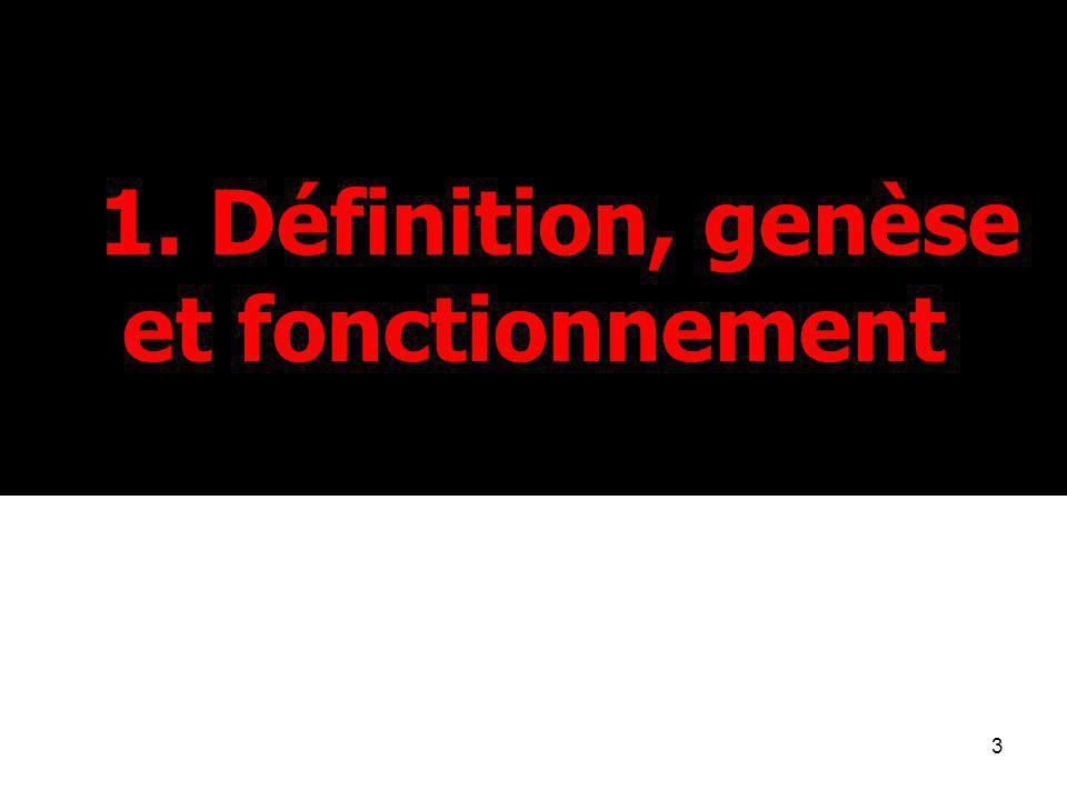 1. Définition, genèse et fonctionnement