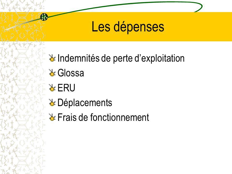 Les dépenses Indemnités de perte d'exploitation Glossa ERU