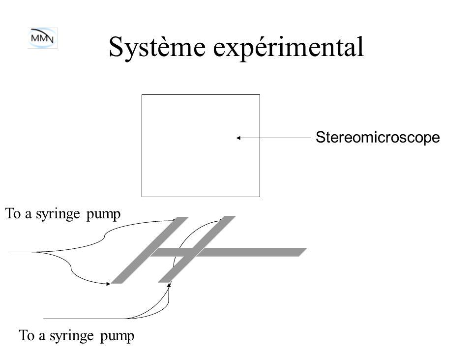 Système expérimental Stereomicroscope To a syringe pump