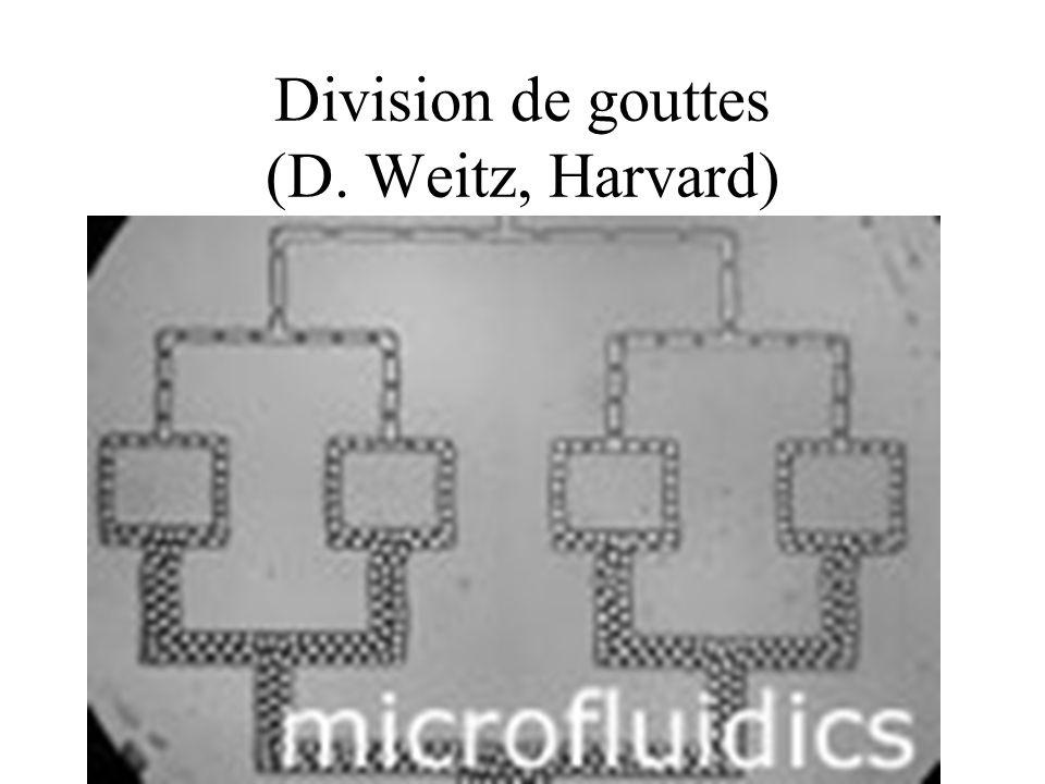 Division de gouttes (D. Weitz, Harvard)