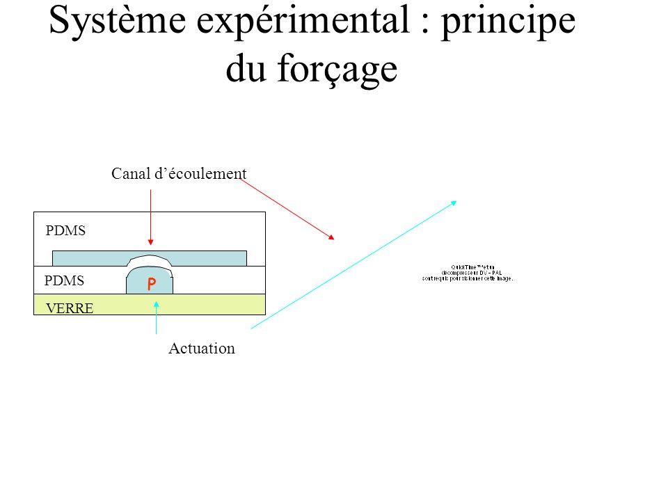 Système expérimental : principe du forçage