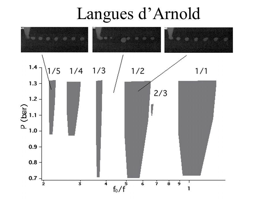 Langues d'Arnold
