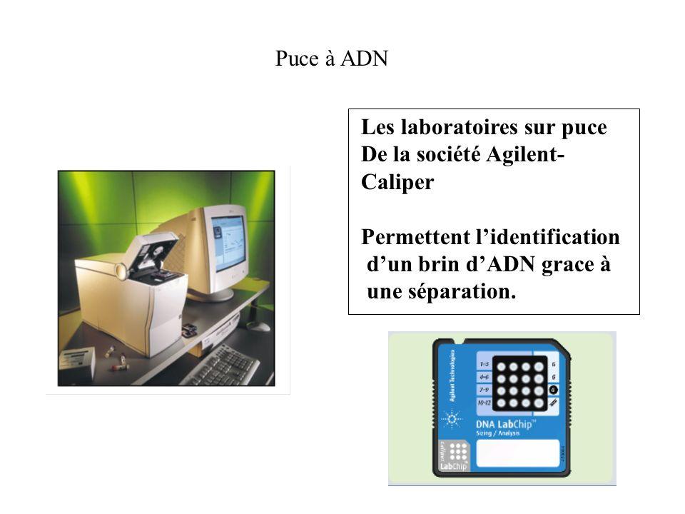 Puce à ADN Les laboratoires sur puce. De la société Agilent- Caliper. Permettent l'identification.